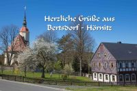 Bertsdorf_B005