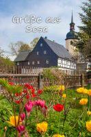 Sosa_B021